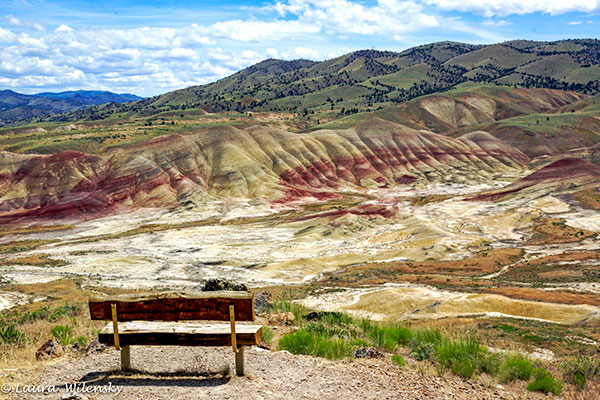 Bench-&-Painted-Hills-600